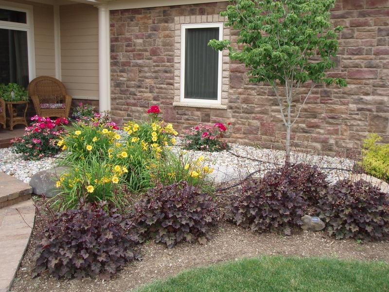 Purple Coral Bells - Cornerstone Landscape and Design